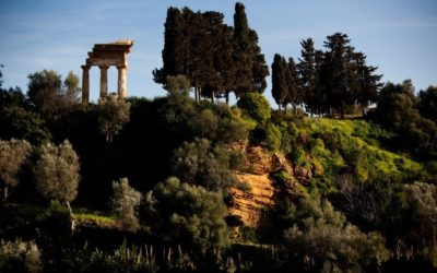 Sicily: the Valley of the Temples amazes with the opening of its Mediterranean garden