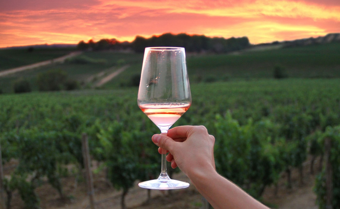 Accessible - Wine Tasting Experience