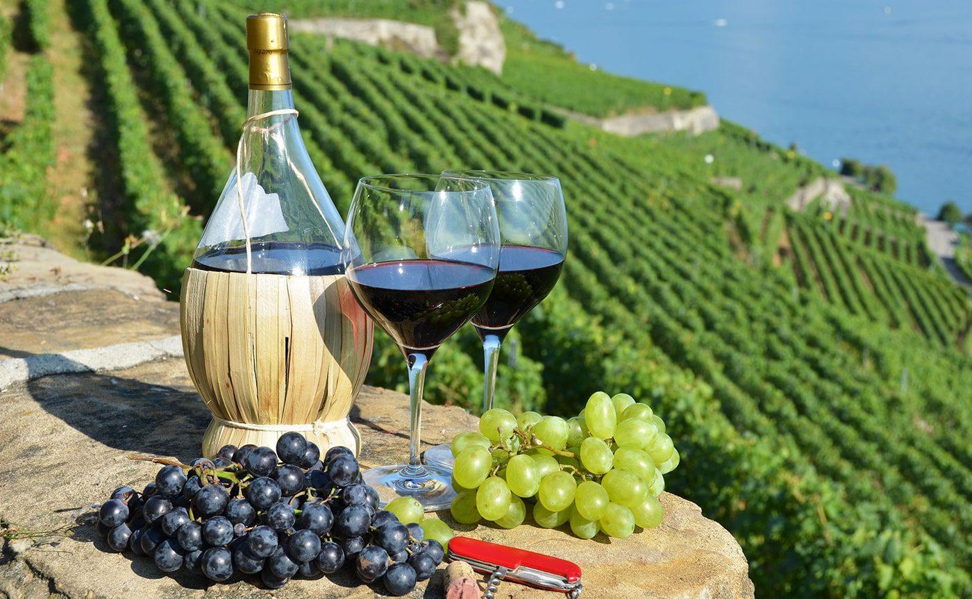 Wine Tasting Experience 03-min