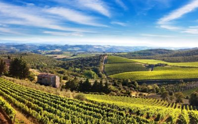 Accessible Wine Tasting in Chianti area