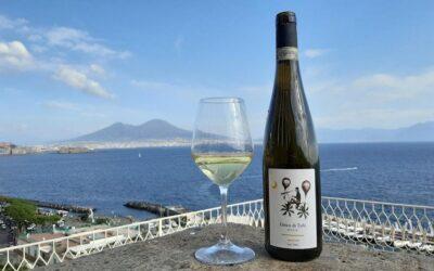 Wine tasting – Accessible tour – Naples and Amalfi coast