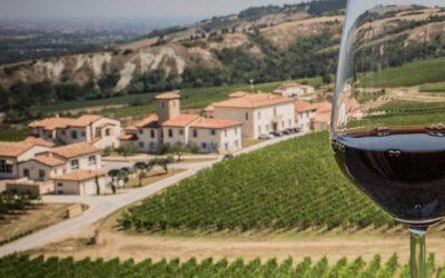 Wine tasting – Accessible tour – Emilia Romagna