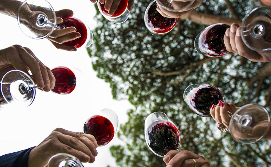 ACCESSIBLE WINE TASTING EXPERIENCE – LOMBARDY