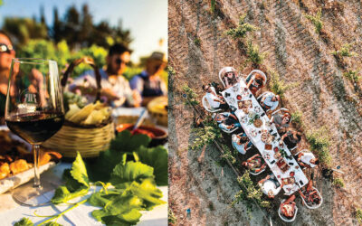 Wine tasting – Accessible tour – Sardinia