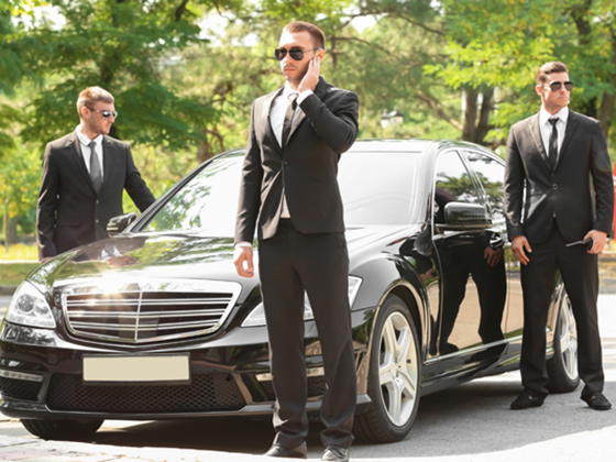 LUXURY SERVICES security