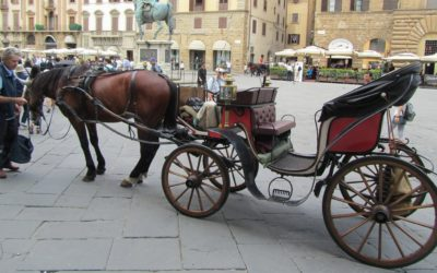 Horse Carriage Tour – Florence