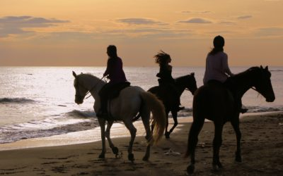 Horse riding between Ancient Ostia and sea