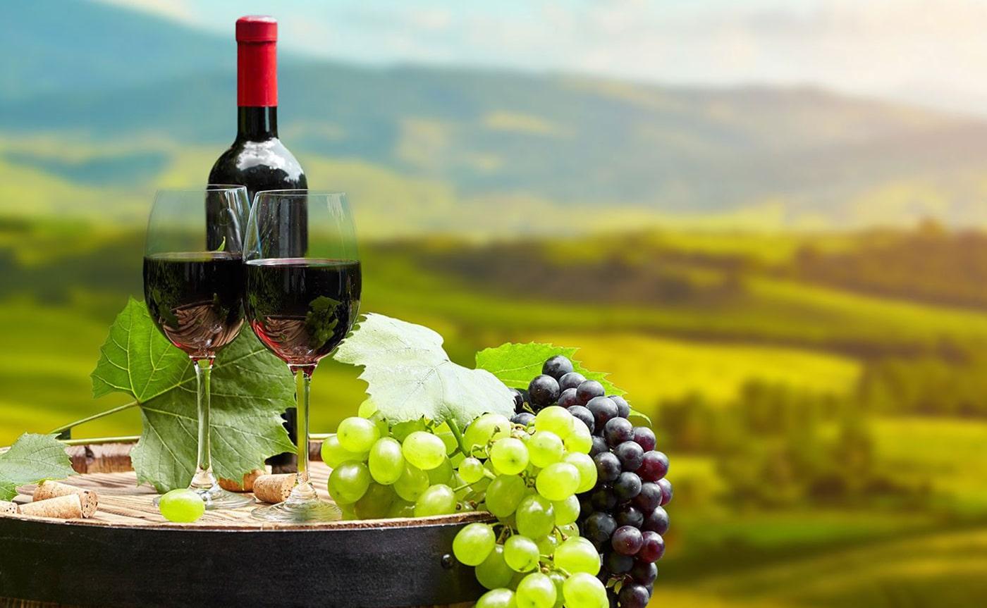 Wine Tasting Experience 02-min