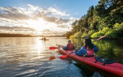 A relaxing and unique experience on Albano Lake: kayak tour and food and wine tasting