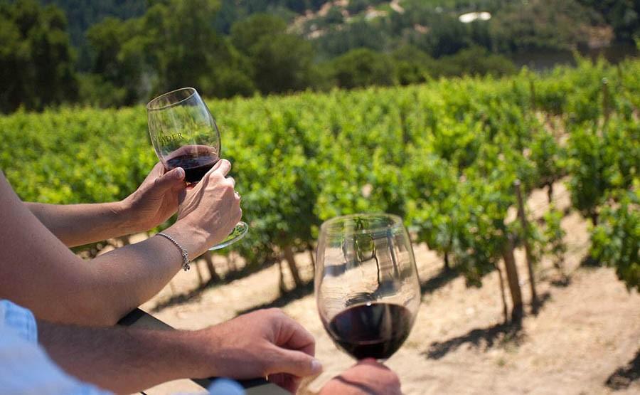 WINE TASTING EXPERIENCE – PIEDMONT