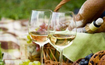 WINE TASTING EXPERIENCE – CINQUE TERRE
