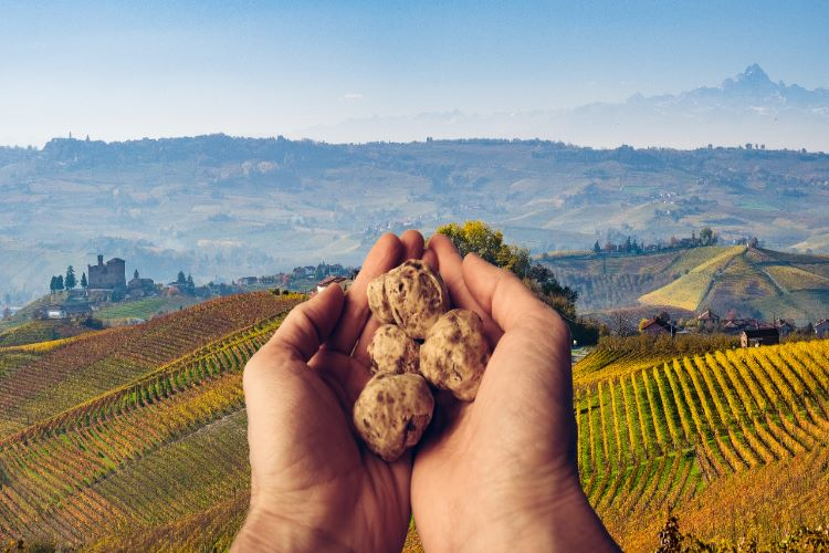 In Italy, the 91st edition of the international Alba white truffle festival